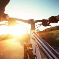 Backcountry Safaris Pathway Bike Rental