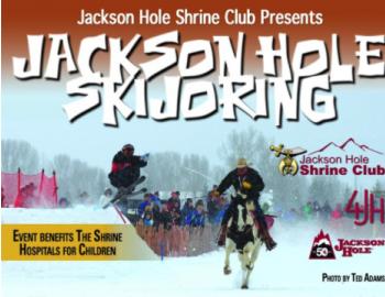 skijouring jackson hole