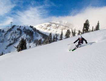 powder skiing jackson hole