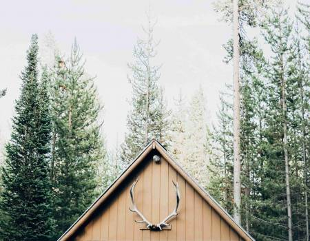 cabin with antlers in the woods