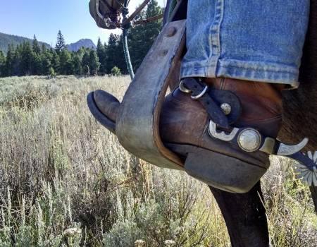 cowboy boots jackson hole