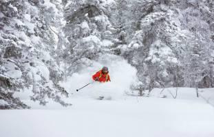 Holiday Ski Special