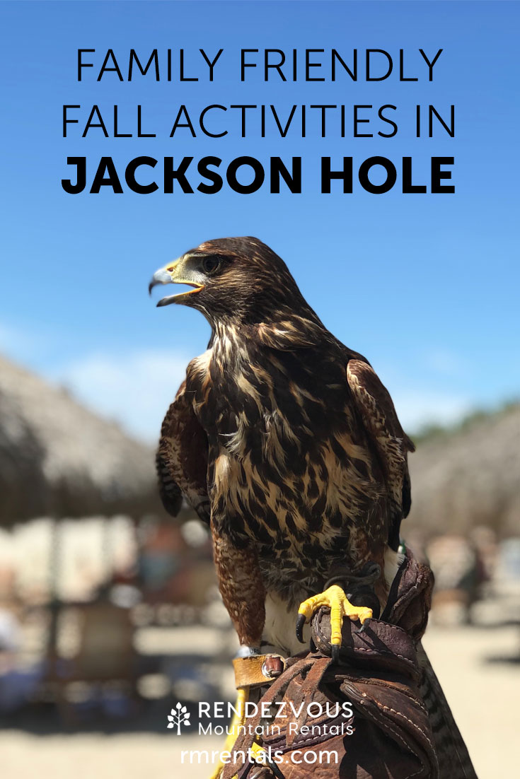 Family Friendly Activities in Jackson Hole