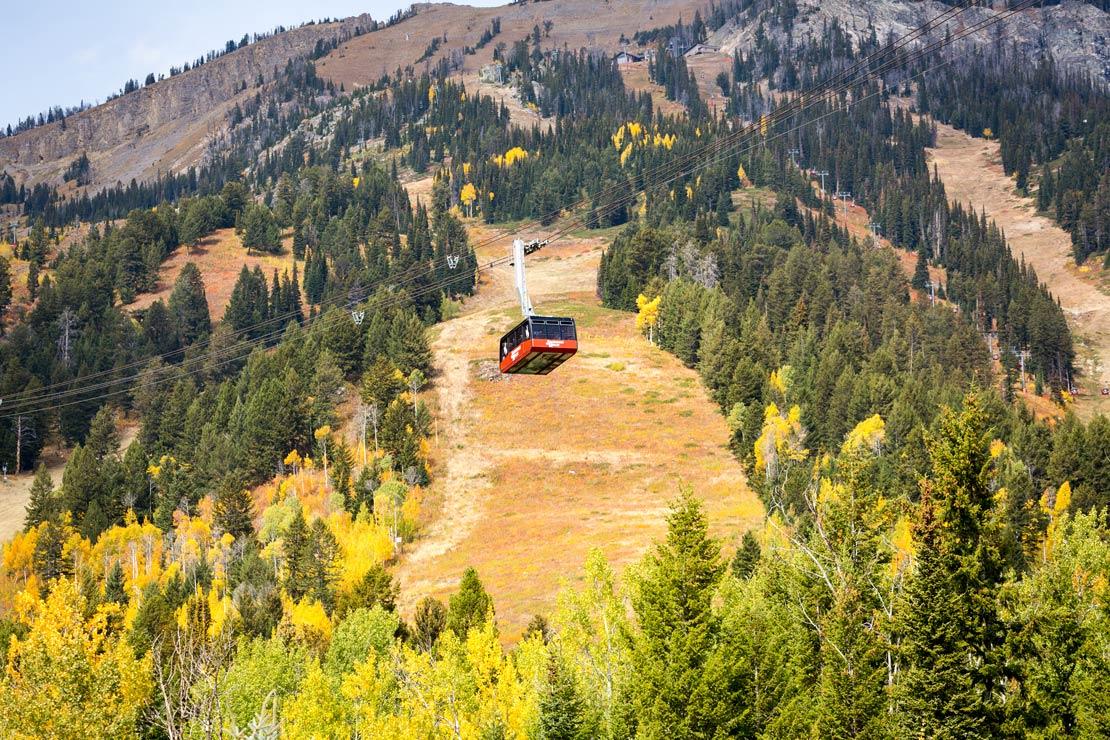 Jackson Hole Tram Fall