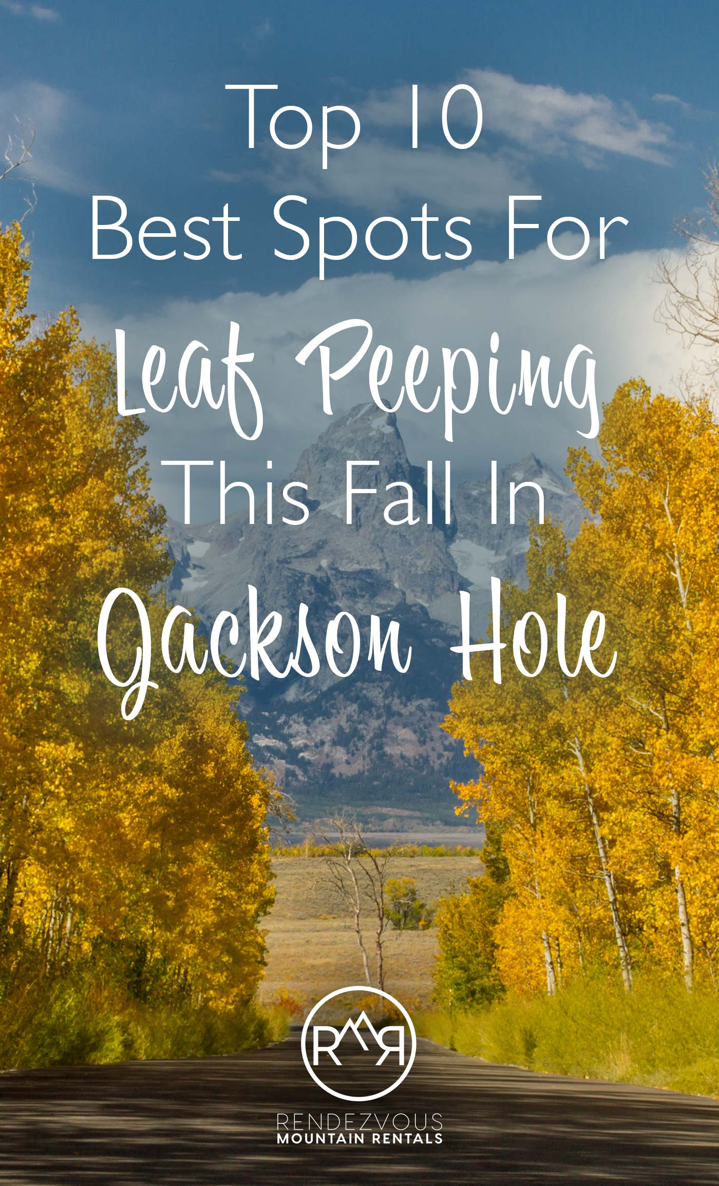 Leaf Peeping In Jackson Hole