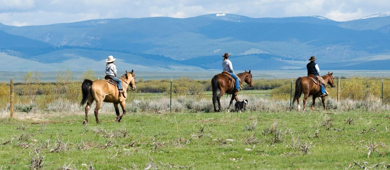 Three people riding horses across field in front of mountain scene.