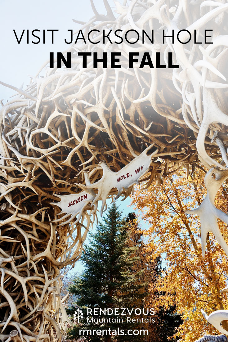 Visiting Jackson Hole in the Fall